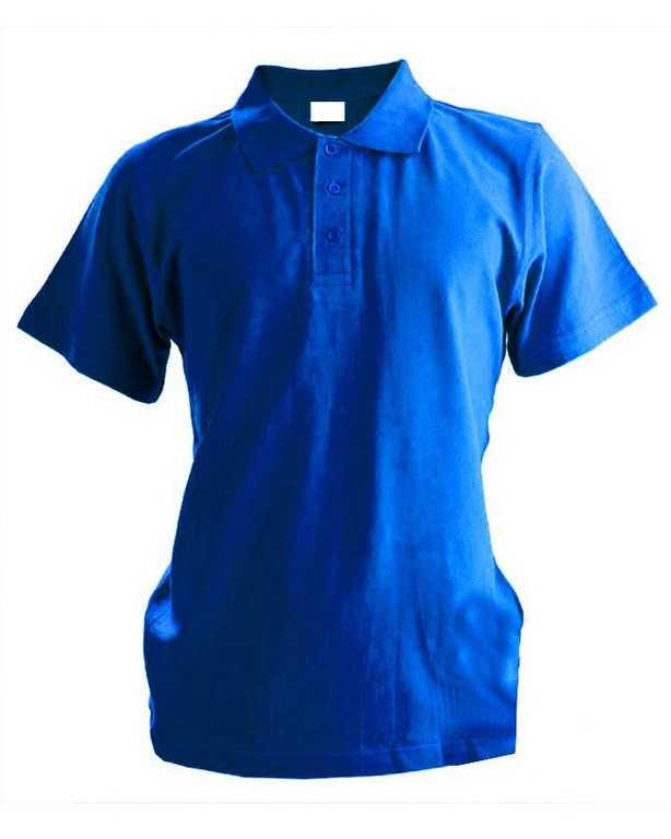 .jpg - Рубашка поло мужская с коротким рукавом васильковая
